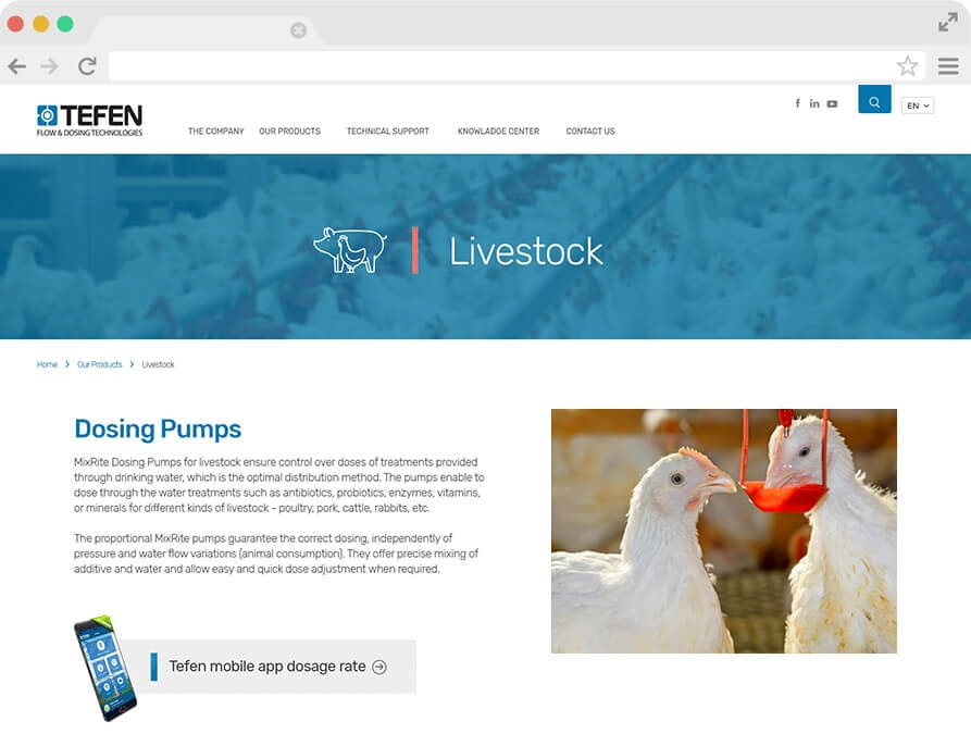 Tefen website design and developed